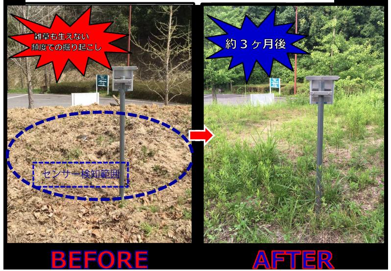掘り起こしを防ぐ設置例